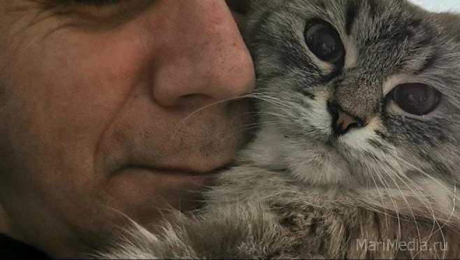 Судебным приставам могут запретить изымать у должников домашних животных
