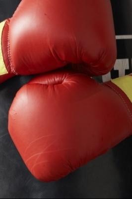 Межрегиональные соревнования по боксу, памяти братьев Нагаевых