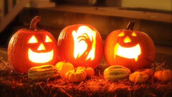 Какую тыкву выбрать на Хеллоуин
