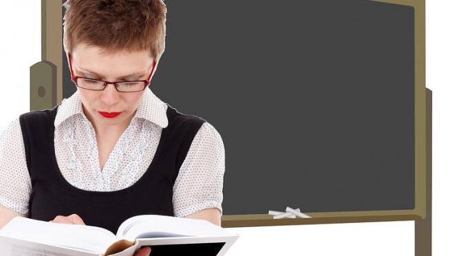В СФ хотят создать единую систему оплаты учителей