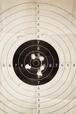 Лично-командный чемпионат г. Йошкар-Олы по стрельбе из пневматического оружия
