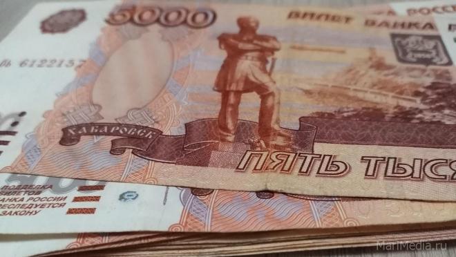 Марий Эл на стимулирующие выплаты для медиков получит 31,8 млн рублей