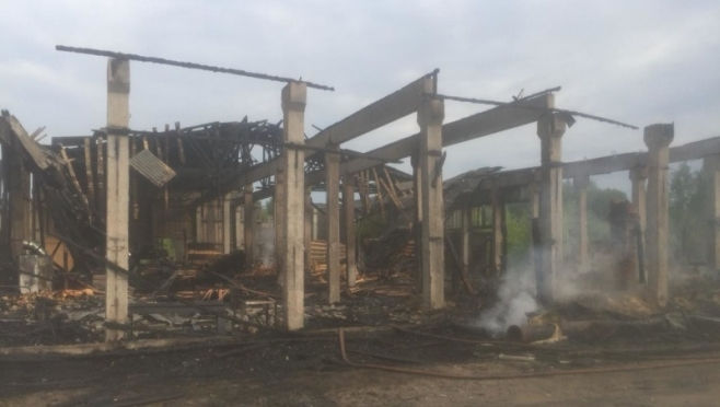 В Марий Эл на пожаре на пилораме погиб мужчина