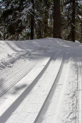 Первенство мира по спортивному туризму на лыжных дистанциях