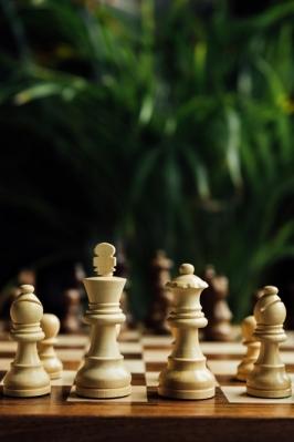 Республиканские соревнования по шахматам
