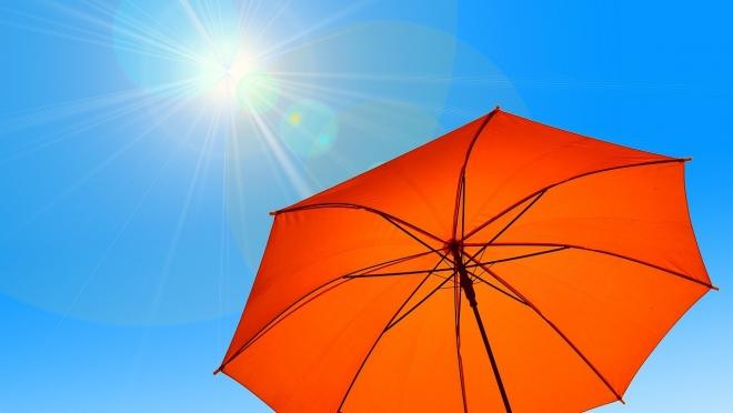 Тепло вернётся в Марий Эл во второй декаде августа