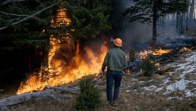 В марийских лесах – высокая пожароопасность