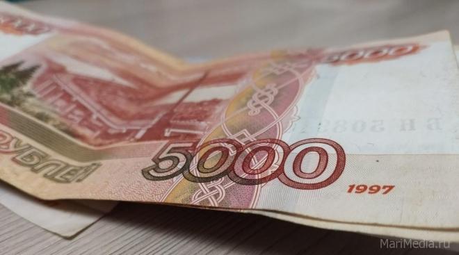 В Марий Эл ветеринарам выплатят единовременно по 5 тысяч рублей
