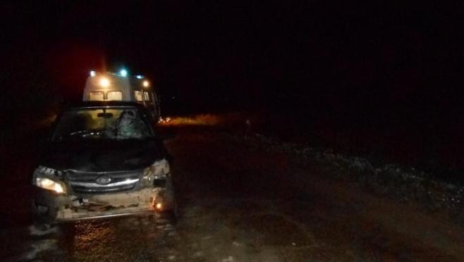 Водителю мотоблока за смерть человека грозит до 12 лет лишения свободы