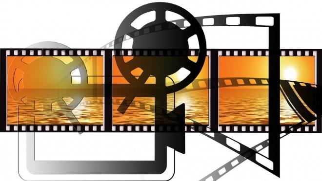 У КВНщиков появился свой кинофестиваль «Золотой телёнок»