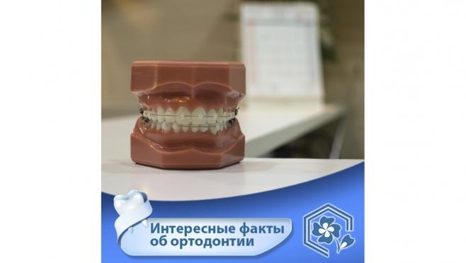 Интересные факты об ортодонтии