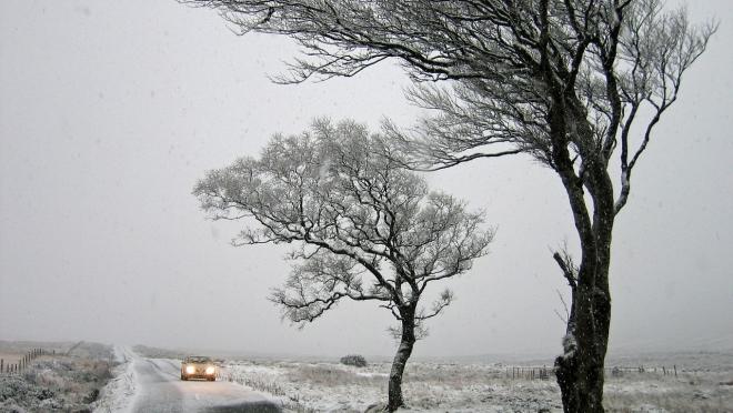 В пятницу в Марий Эл порывы ветра будут достигать 21 м/с