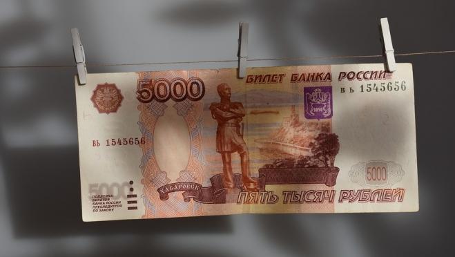Звениговский суд вынес приговор за московскую фальшивку