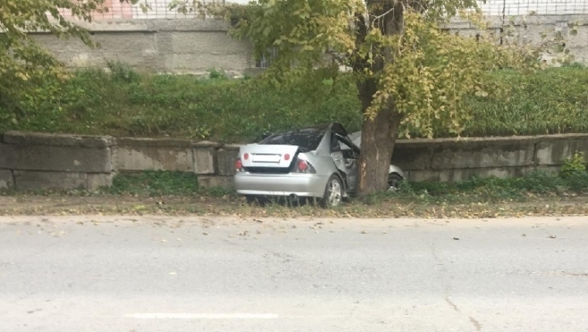 Житель Волжска на иномарке врезался в дерево