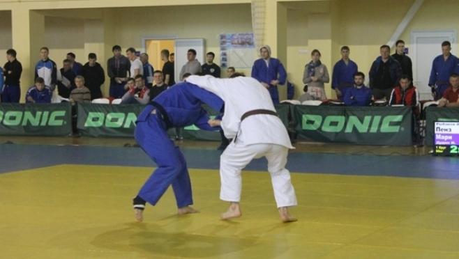 В Йошкар-Оле пройдёт Первенство ПФО  по дзюдо