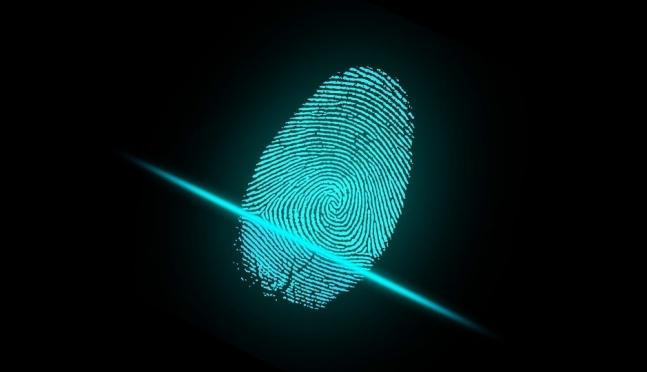 Сколько стоит изготовить сертификат электронной подписи в Марий Эл