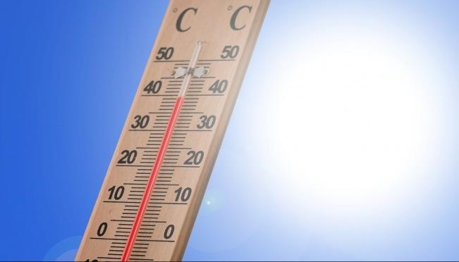 В Марий Эл столбики термометров сегодня поднимутся до +36ºС