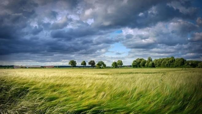 В субботу в Марий Эл ожидается сильный ветер