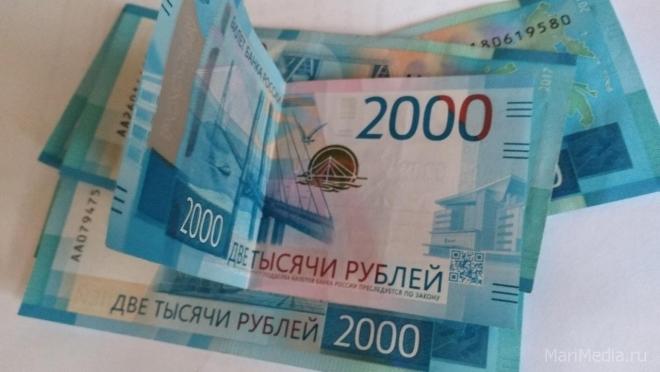 Жительница Йошкар-Олы лишилась денег, пытаясь купить сухожаровой шкаф