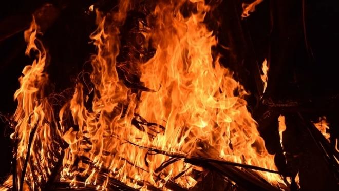 В Марий Эл количество пожаров снизилось более чем в два раза