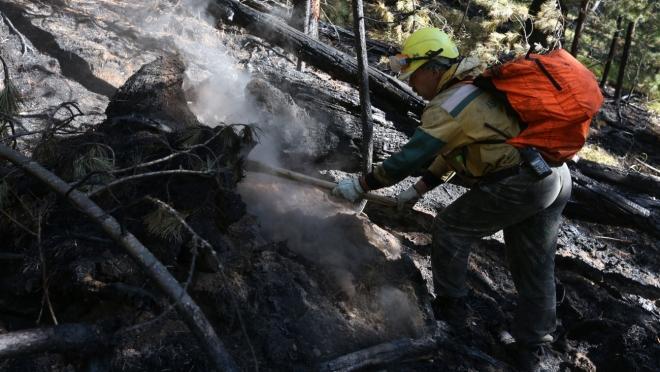В выходные лесных пожаров в Марий Эл не прогнозируется