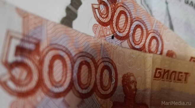 В Марий Эл долги по зарплате за месяц сократились на 6 млн рублей