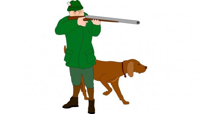 В Марий Эл утвердили новый порядок выдачи разрешений для охотников