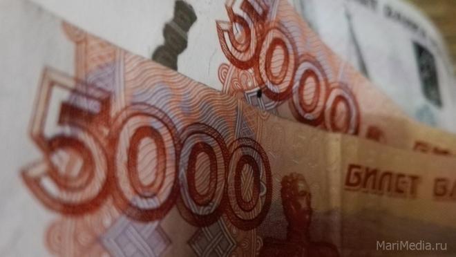 Аферисты развели йошкаролинку на 800 тысяч рублей