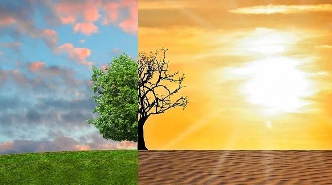 В Марий Эл стартовали Дни защиты от экологической опасности