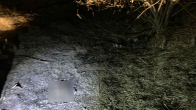 В Саранске около школы обнаружили тело младенца 18+