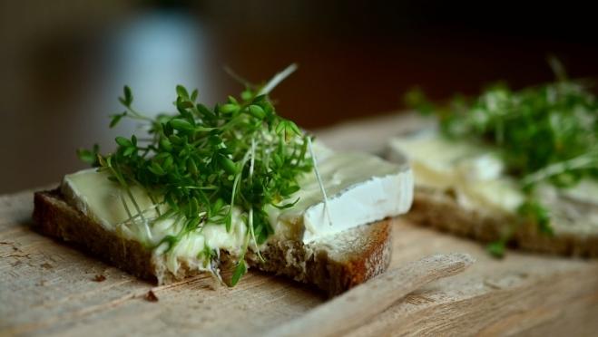 Мариэльцам рассказали как выбрать качественный плавленый сыр