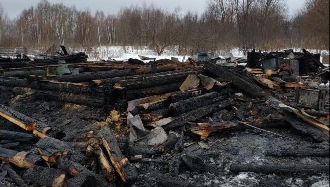 В Оршанском районе на пожаре погиб пенсионер
