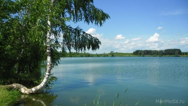 Волжский городской суд признал жилищное строительство на берегу Куруктурского озера незаконным