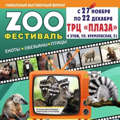 Зоо фестиваль