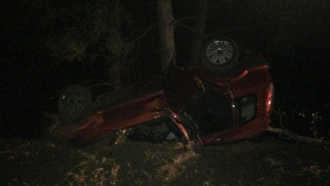 В Звениговском районе пьяный водитель вылетел в кювет