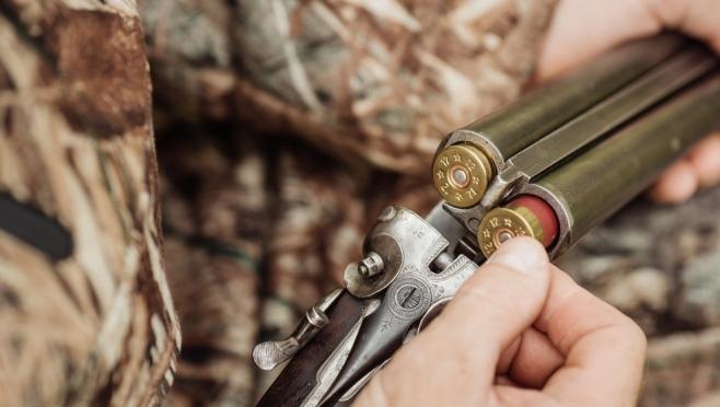 С сегодняшнего дня разрешена охота в Медведевском и Звениговском районах