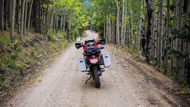 В Марий Эл нетрезвый мотоциклист-грибник пойдёт под суд