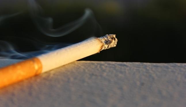 Из-за непотушенной сигареты в Марий Эл произошло 13 трагедий