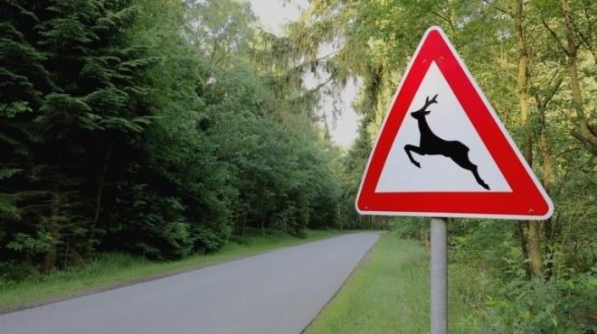 Появился рейтинг опасных дорог в Марий Эл