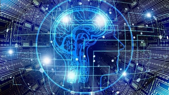 В Марий Эл формируется «Единый цифровой контур»