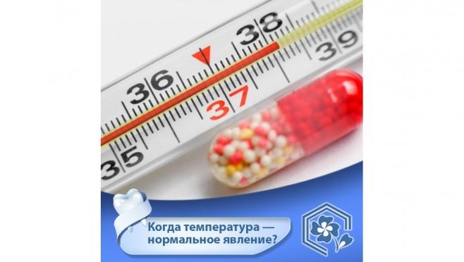Когда температура — нормальное явление?