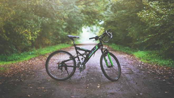 В Мари-Турекском районе на сельской дороге сбили юного велосипедиста